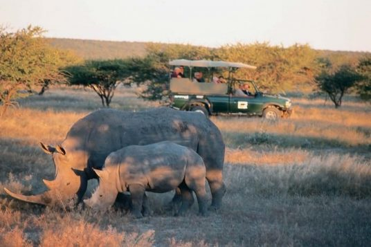 Namibie Botswana Chutes Victoria 8 1