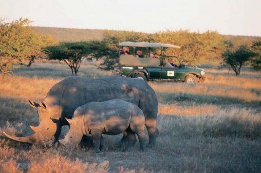 Namibie et Chutes Victoria 10