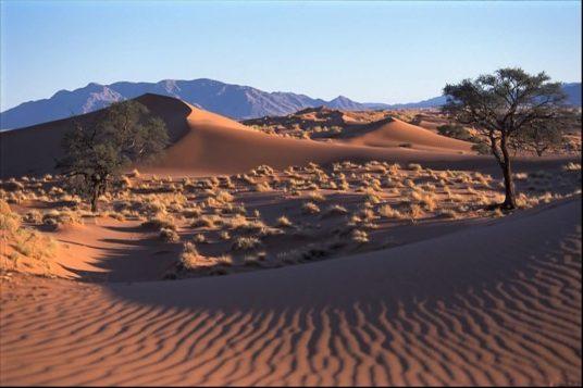 Namibie et Chutes Victoria 2