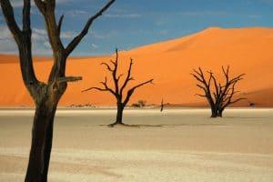 Namibie desert du namib