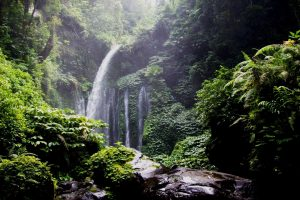 Circuit Bali – Lombok La beauté des paysages 9