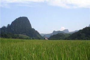 Circuit au Nord du Laos Le dépaysement 10