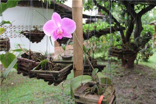 Circuit au Nord du Laos Le dépaysement 3