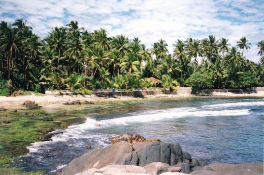 Circuit découverte du Sri Lanka 1