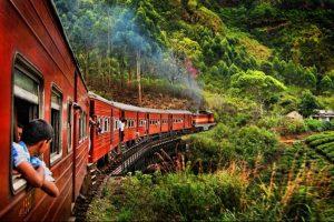 Circuit découverte du Sri Lanka 10