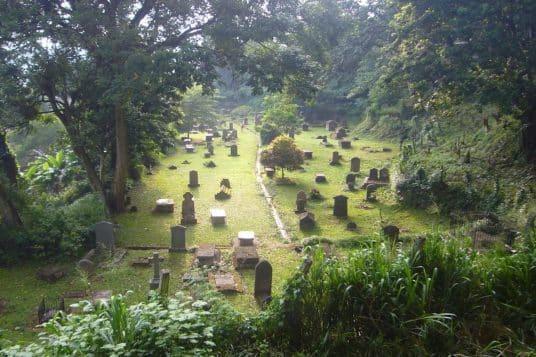Circuit découverte du Sri Lanka 6