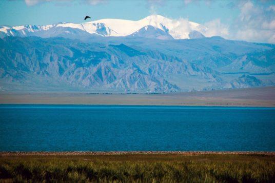 Découverte des plaines de Mongolie 13