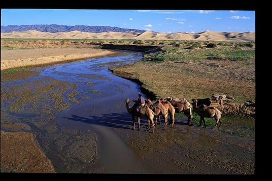 Découverte des plaines de Mongolie 6