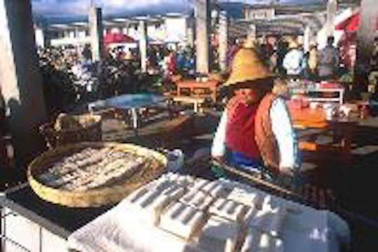 Découvrez les provinces de Yunnan et du Tibet 3