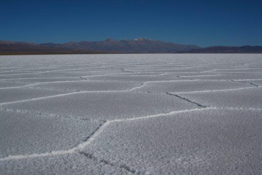Du Nord de l'Argentine au salar d'Atacama 5