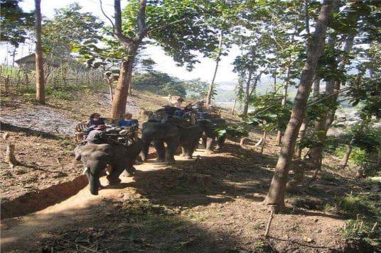 Le Laos en étapes de charme 4