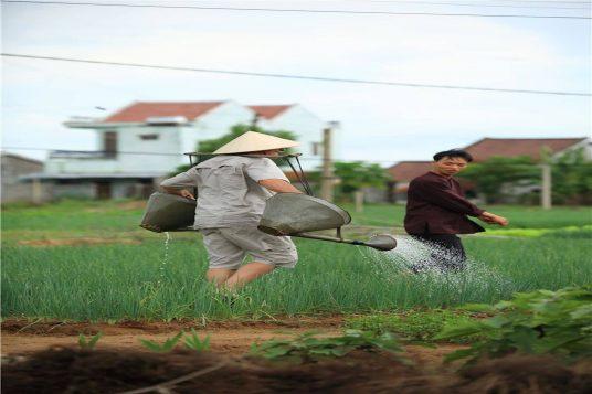 Le Vietnam en famille 10