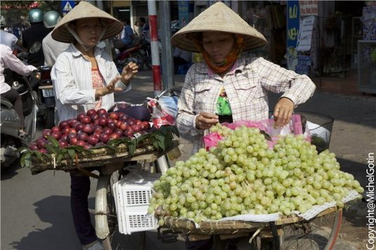 Le Vietnam en famille 2