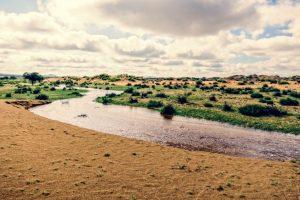 Mongolie Entre steppe et désert et de yourte en yourte 3