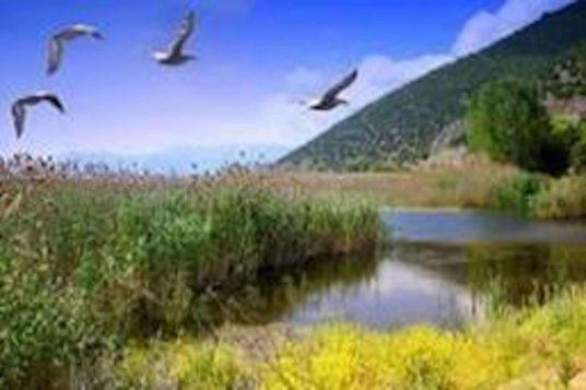 Visitez la région Épire dans le Nord de la Grèce en voiture 4