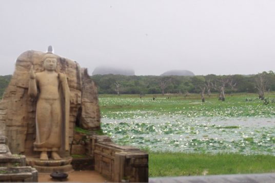 Voyage combiné Inde du sud et Sri Lanka 10