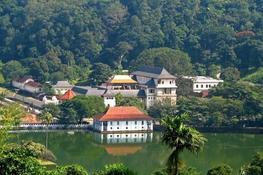 Voyage combiné Inde du sud et Sri Lanka 11